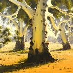 Summer Gums Seymour Vic. 120cm x 150cm $13500  Sold